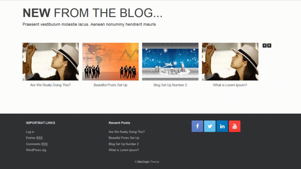 blogging with wordpress websites